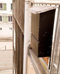 Nichoir à chauve-souris balcon