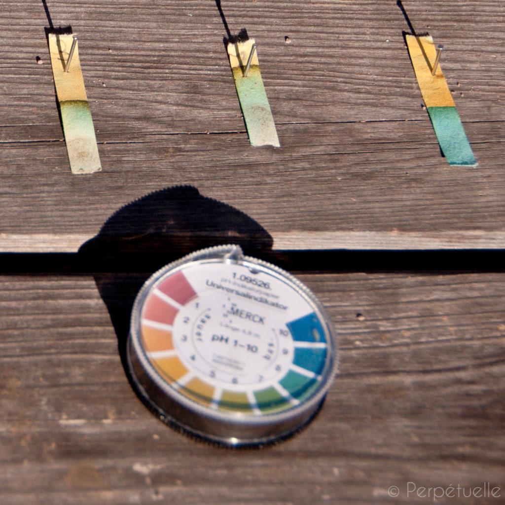 Connaître son sol : Mesure du pH