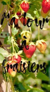 Tour à fraisiers