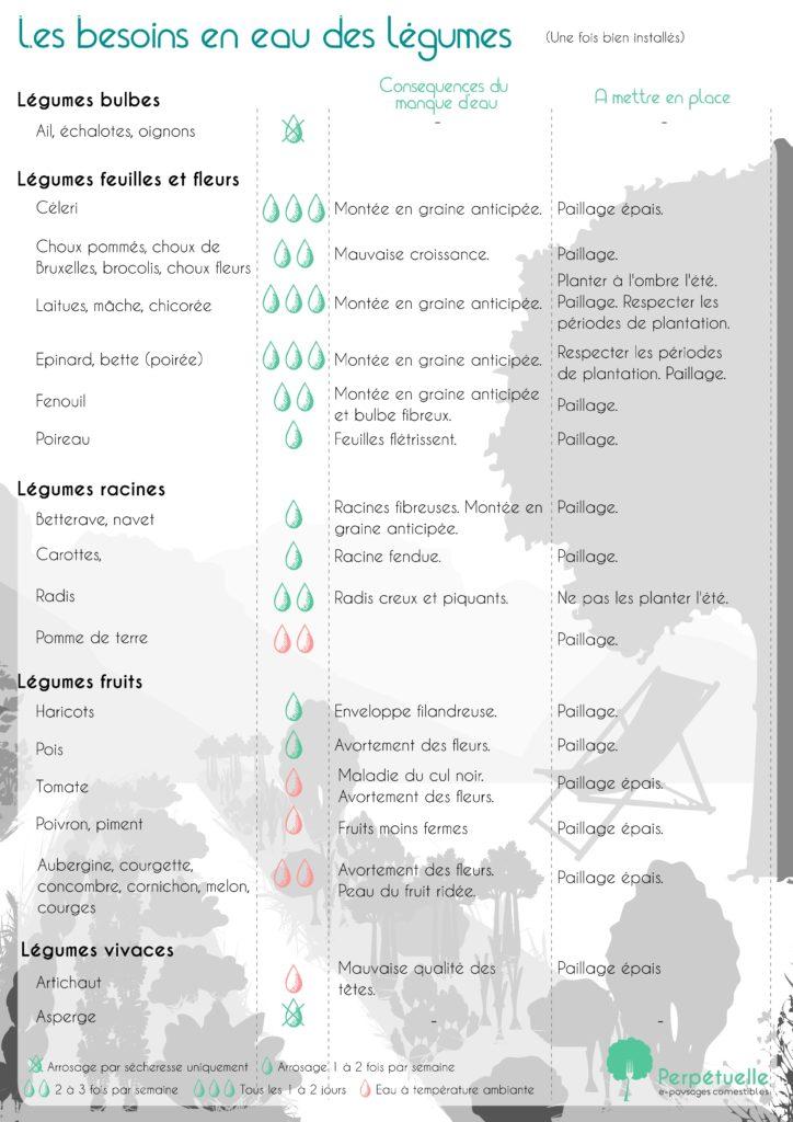 L'arrosage légume par légume en permaculture