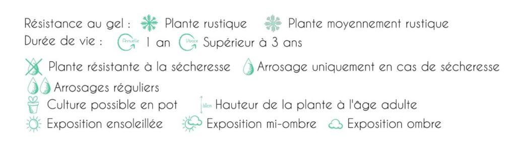 Légende pictogramme plantes