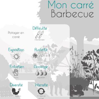 caractéristiques guide barbecue p1