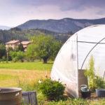 Pourquoi cultiver sous serre en permaculture ?